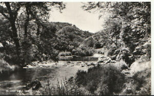 Derbyshire Postcard - In Chee Dale - Real Photograph - Ref TZ5776