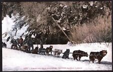 VINTAGE 1907-15 DOG SLED MEN ALASKAN CANYON YUKON CANADA OLD LITHO POSTCARD