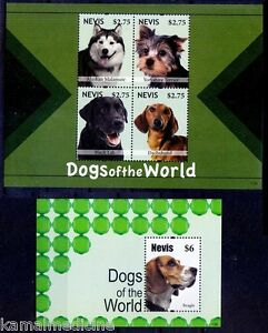 Dogs, Black Lab, Dachshund, Beagle, Terrier, Malamute, Nevis 2011 MNH 2SS (N143)