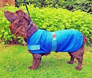 Dog Cooling Coat, Summer Heat, Travel, Holiday, Reusable Chill Jacket By PetFace