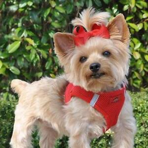 American River Red Dog Harness Ultra Choke-Free Mesh  -  XXS-3XL