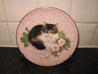 CAT   PLATE -  MEET MY KITTENS - AGNEATHA     -  AYNSLEY