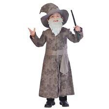 Boys 5-6 Years Grey Wise Wizard Fancy Dress Costume