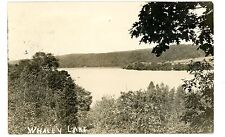 Holmes NY - WHALEY LAKE - RPPC Postcard near Pawling/Towners