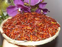 50gr PIMENT de Madagascar PILI PILI extra hot red pepper épices fines spices