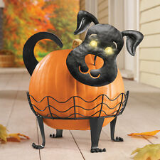 3Pc Metal Lighted Eyes Puppy Dog Pumpkin Holder Halloween Decoration
