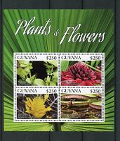 Guyana 2015 MNH Plants & Flowers 4v M/S I Yerba Mate Torch Ginger Nature Stamps