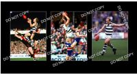 GARY ABLETT Snr GEELONG FC GREAT 3 8x6 LARGE PHOTOS