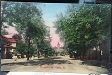 CHICO, CALIFORNIA M. Rieder Hand Colored Post Card 1908 BUTTE COUNTY, Street