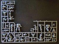 Warhammer 40k Primaris Space Marine Intercessor Squad A from Dark Imperium