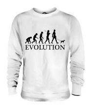 Toy Manchester Terrier Evolution Of Man Unisex Sweater Mens Womens Ladies Dog
