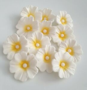 12 Edible White Sugar Paste Flowers with yellow, Cake Decorations Cupcake Topper