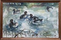 Schwimmende Enten 1956 Aquarell Monogrammiert 40,5 x 60,5 cm Tieren Vögel