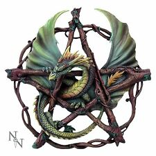 Forest Pentagram Dragon Wall Plaque 33cm High Anne Stokes Nemesis Now