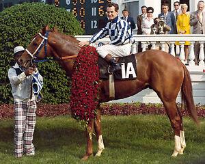 Secretariat (Ron Turcotte - Up) 1973 Triple Crown Winner - 8x10 Color Photo