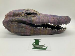 Unique Alligator Head From A Louisiana Gator Taxidermy Art