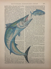 Wahoo Fish Art Printed On Antique Encyclopedia Page Vintage Decor