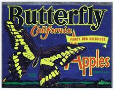 Papillons, Original California Pomme Caisse Label, M A & Ray Travers Watsonville