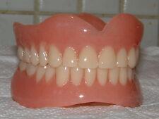 Completo Superior & Inferior Dentaduras/dientes falsos, a estrenar, regalos de la novedad, las bromas