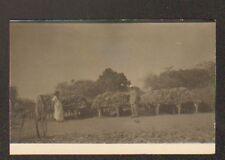 ETHNIQUE / AFRIQUE AGRICOLE / RECOLTE & STOCKAGE du MANIOC , carte-photo postale