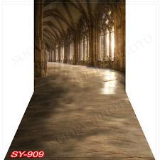 Indoor 10'x20'Computer/Digital Vinyl Scenic Photo Backdrop Background SY909B88