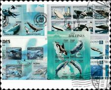 Whales : 25 Different Stamps Collection
