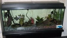 Unbranded Fresh Water Complete Aquarium Setups