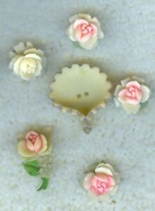 6 pc. set of ROSE BUTTONS w/TUSSY MUSSY - B148