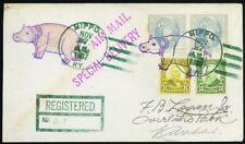 Hippo Fancy Cancel on Registered Cover VERY SCARCE! - Stuart Katz