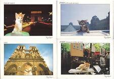 Set lot 4 pcs CAT Kitten PC post card 1980th feline unused France Paris LOVELY!