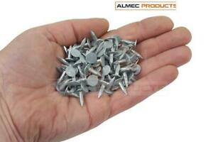 Clout Felt Roof Nails 100g 13mm Extra Large Head Galvanised (Approx 140 Fixings