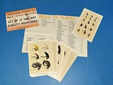 More details for set of 32 postcards, favorite flies by mary orvis marbury, fly fishing