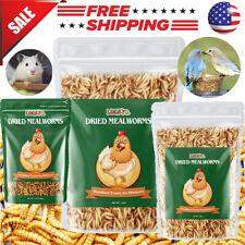 Bulk Dried Mealworms for Chickens Wild Birds Feed Bluebirds Hamster Hen Treats
