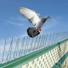 Bird Pigeon Metal Wall Fence Spikes 5m Deterrent Anti Perch Control Repeller
