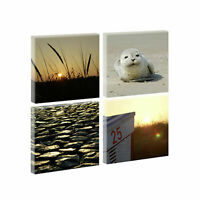 Muschel Strand x00270 Wand Deko Leinwand Bilder