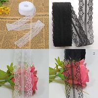 1 Roll 10M Wholesale Beautiful Handicrafts Embroidered Net Lace Trim RibbonLace~