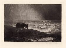 "Exciting 1800s John MacWhirter Etching ""Donkey in the Rain"" Framed Signed COA"