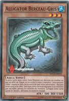 ♦Yu-Gi-Oh!♦ Alligator Berceau-Gris/Graydle : DOCS-FR033 -VF/COMMUNE-