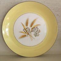 Vintage Century Service Autumn Gold 10-inch dinner plate — excellent condition