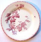 Assiette Art Nouveau Terre de Fer GIEN: Groseilles en rose