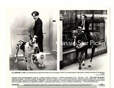 F275 Michael J. Fox great dane poodle horse For Love or Money 1993 photo