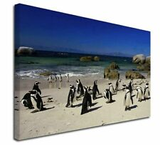 More details for beach penguins x-large 30