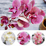 3D Artificial Orchid Flowers Fake Butterfly Orchid For Home Wedding Decoration