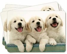 Golden Retriever Puppies Picture Placemats in Gift Box, AD-GR56P