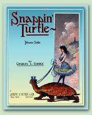 SNAPPING TURTLE with Fairy 8x10 Vintage Fantasy sheet music cover Art print