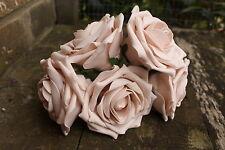 5 X Rosa Pálido Moca Vintage Color Espuma Rosas Grande Abrir 9cm