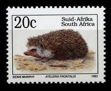 Igel. Kapigel. 1W. Südafrika 1993