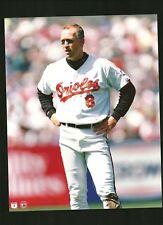 1993 MLB Licensed Cal Ripken Jr Orioles 8x10 photo Fuji