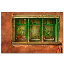 "Keith Berr 'Cactus Window' Canvas Art 16""x24""  NEW"