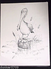 BLACK AND WHITE PELICAN ART POSTER PRINT D.J. SHEFFER 8 1/2 IN BY 11 IN.  #48